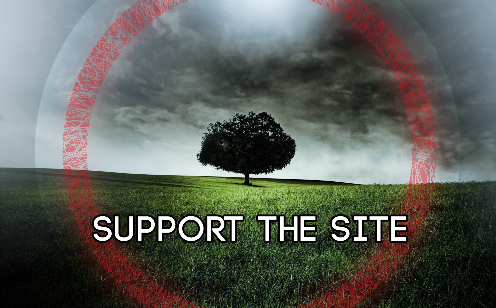 Support The Site