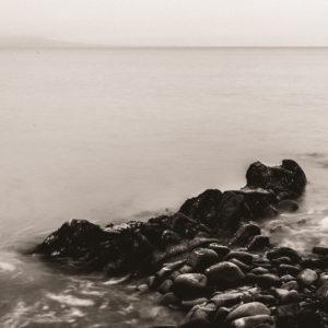 Salterstown - Tommie Kelly