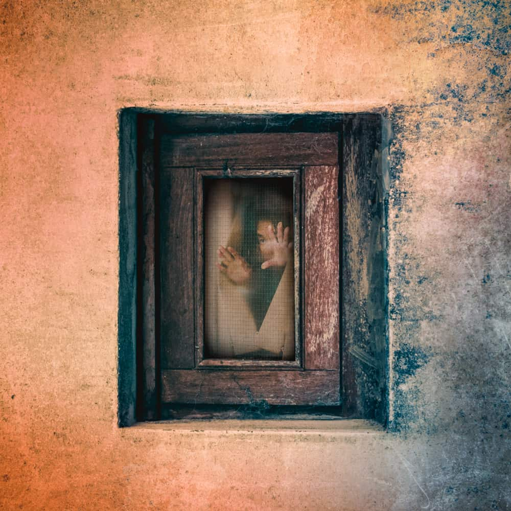Window Women - Tommie Kelly